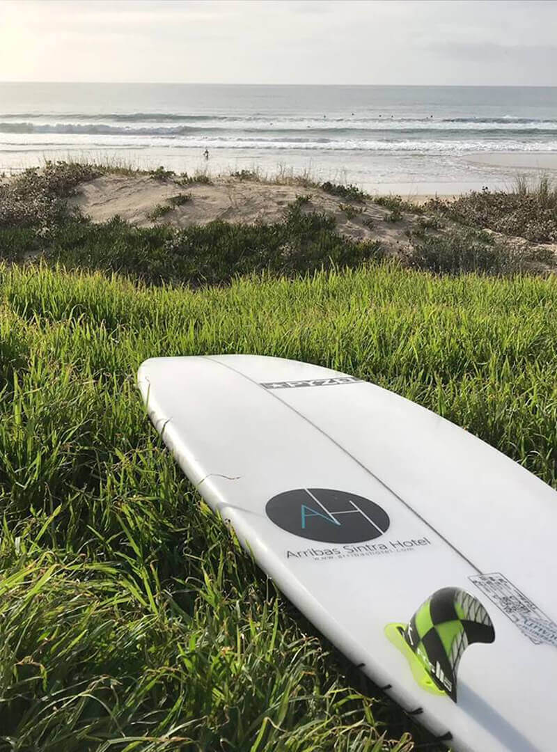 Day Surf Guide